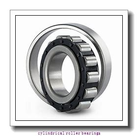 FAG NU314-E-M1  Cylindrical Roller Bearings