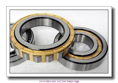 FAG NJ2310-E-TVP2-C3  Cylindrical Roller Bearings