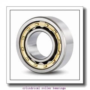 100 mm x 180 mm x 46 mm  FAG NJ2220-E-TVP2  Cylindrical Roller Bearings