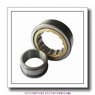 17 mm x 47 mm x 14 mm  FAG NUP303-E-TVP2  Cylindrical Roller Bearings