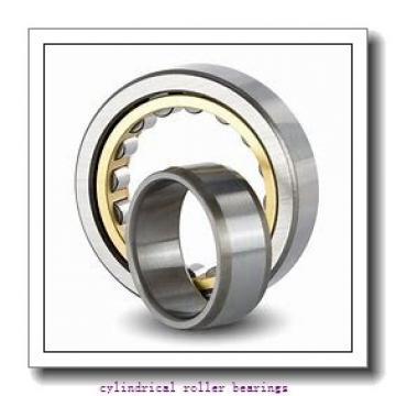 80 mm x 170 mm x 39 mm  FAG NJ316-E-TVP2  Cylindrical Roller Bearings