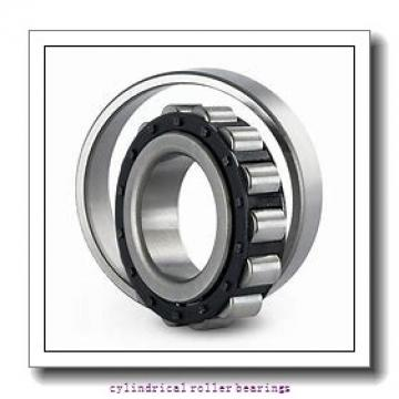 190 mm x 340 mm x 55 mm  FAG NUP238-E-M1  Cylindrical Roller Bearings