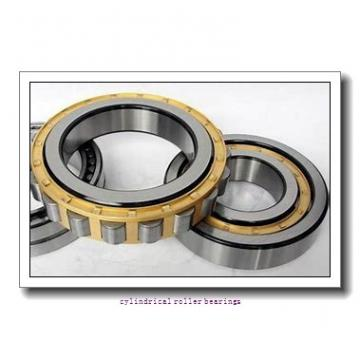 260 mm x 480 mm x 80 mm  FAG NU252-E-TB-M1  Cylindrical Roller Bearings