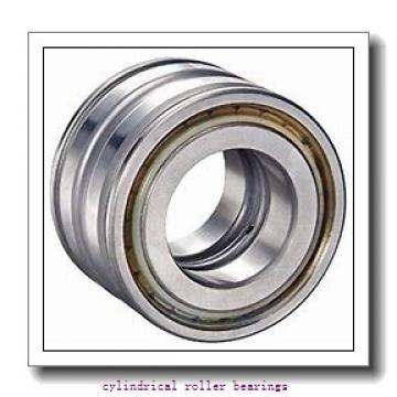 95 mm x 170 mm x 43 mm  FAG NJ2219-E-TVP2  Cylindrical Roller Bearings